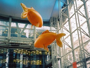 Giant Airfish, Langham Place