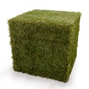 Rental_GrassCube